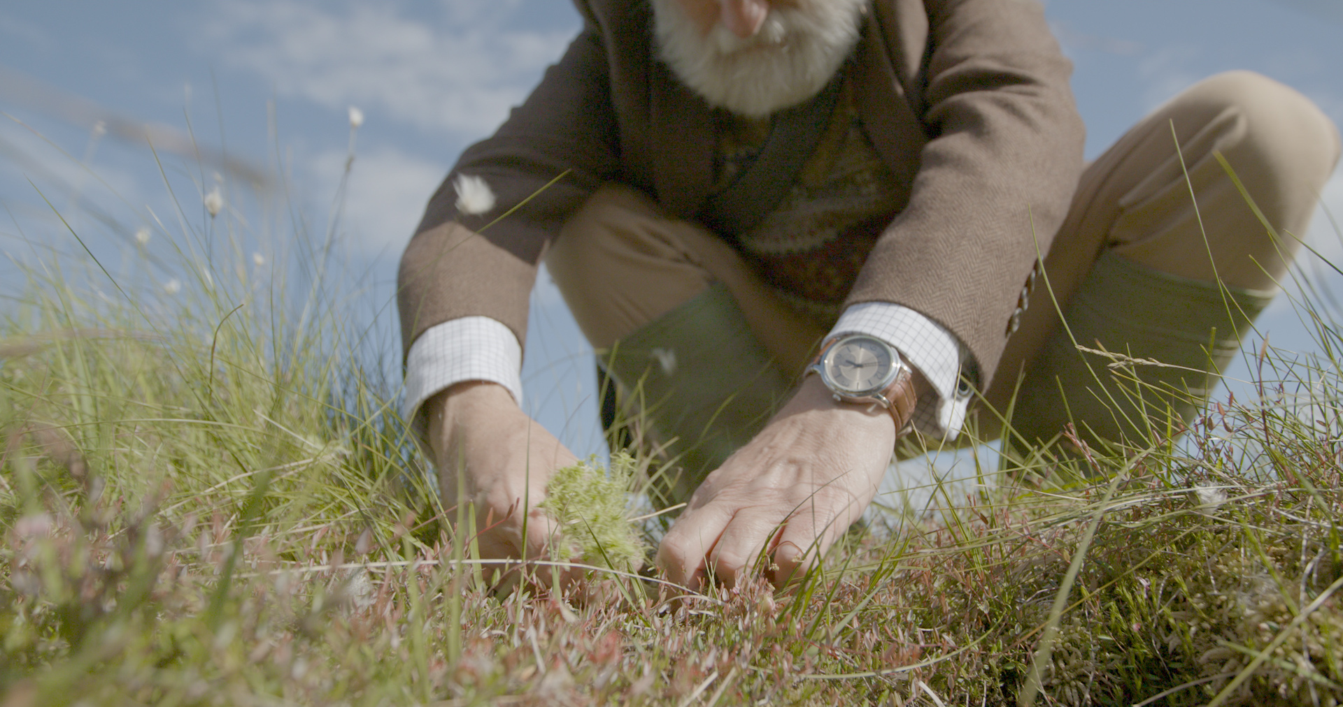 The Carbon Farmer (Melvyn Rawlinson) inspecting and planting sphagnum moss in his bog